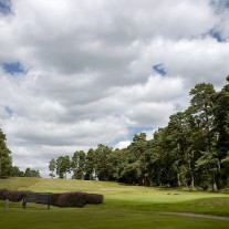EB-126-08: Swinley Forest, 2nd Green & 3rd Tee