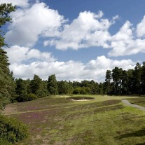 EB-125-03: Swinley Forest, 10th Hole
