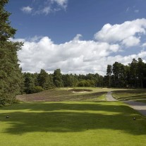 EB-125-04: Swinley Forest, 10th Hole