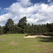 EB-125-05: Swinley Forest, 10th Green