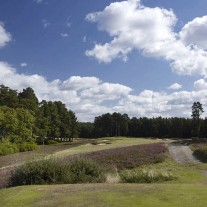 EB-125-07: Swinley Forest, 11th Hole