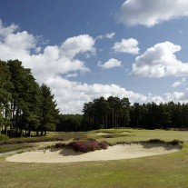 EB-125-09: Swinley Forest, 11th Hole