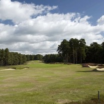 EB-125-10: Swinley Forest, 11th Hole