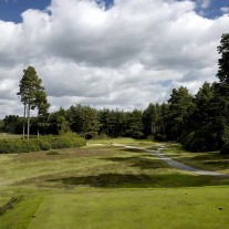 EB-125-11: Swinley Forest, 13th Hole