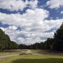 EB-126-03: Swinley Forest, 16th Hole