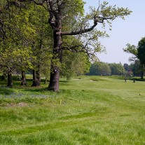ES-264-03: Burhill Old Course 14th Hole