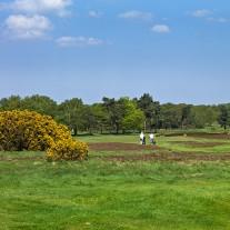 ES-268-11: Walton Heath New Course 5th Hole