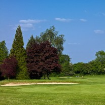 ES-270-04: Effingham, 14th Hole