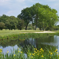 ES-272-05: Burhill New Course, 11th Green