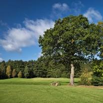 ES-293-05: Merrist Wood, 10th Hole