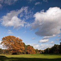 ES-298-09: Worplesdon 11th Hole