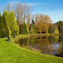 ES-255-09: Fishing, Windlesham Arboretum, Windlesham