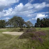 ES-290-03: Walton Heath, New Course, 4th Hole