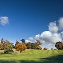 EWS-67-05: Cowdray Park, 8th Hole