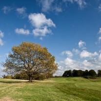 EWS-67-06: Cowdray Park, 10th Hole