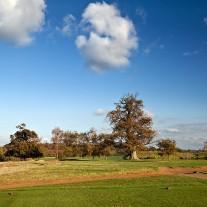 EWS-68-03: Cowdray Park, 11th Hole
