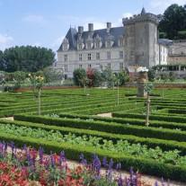 FLO-64-03: Gardens, Chateau Villandry